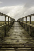 Walkway to the beach of San Juan — Stock Photo