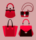 Woman bags — Stock Vector