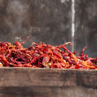 Dry chili — Stock Photo