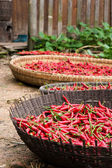 Red hot chillies — Stock Photo