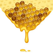 Flowing honey — Stock Vector
