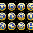 Icons of signs of the zodiac - Stock vektor