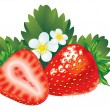 Strawberry - Stock Vector