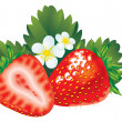 Royalty-Free Stock Vectorafbeeldingen: Strawberry