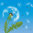Dandelion — Vector de stock #24739059
