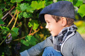 Portrait of boy on a background a vineyard — Stock Photo