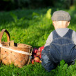 Portrait of child in a garden — Stock Photo