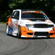 Stock Photo: Bohemihill climb Race Skoda