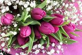 Bouquet of pink flowers — Stock Photo