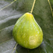 Stock Photo: Fig on fig leaf