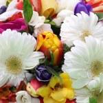 boeket van kleurrijke bloemen — Stockfoto #22038445