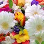 boeket van kleurrijke bloemen — Stockfoto