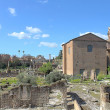 The Roman Forum — Stock Photo