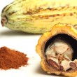 Cacao fruit and cocoa powder — Stock Photo #34768705