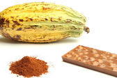 Cacao fruit, cocoa powder and chocolate — Stock Photo