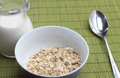 Bowl of oatmeal with milk jug — Stock Photo
