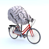 Human brain with arms and legs riding a bicycle — Stock Photo