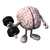 Brain organ with arms and legs weight training — Stock Photo