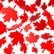 Canadian maple leafs autumn leaves - Stock Photo