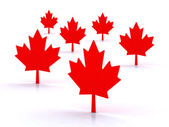 3d maple leafs — Stock Photo