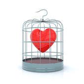 Heart inside the birdcage — Stock Photo