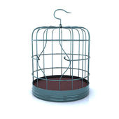 Broken bird cage — Stock Photo