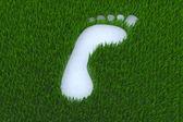 Footprint on grass — Stock Photo