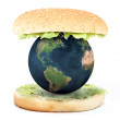 The world inside a sandwich — Stock Photo