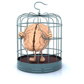Brain escape from the birdcage — Stock Photo