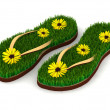 Two sandals with green grass and yellow flowers — Stock Photo #33327171