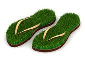 Deux sandales avec herbe verte — Photo