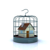 Home inside a birdcage — Stock Photo