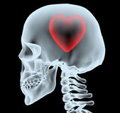 X-ray of a head with the heart instead of the brain — Stock Photo