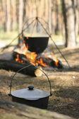 锅的饭 — 图库照片