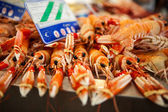 Langoustines — Stock Photo