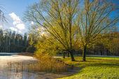 Herbstlandschaft — Stockfoto