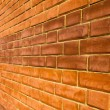 Greater brick wall 2 — Stock Photo