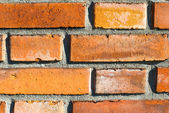 Greater brick wall 6 — Stock Photo