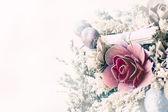 Flores secadas — Foto de Stock