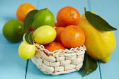 Fresh citrus fruit with leaves — Stock Photo
