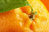 Ripe orange with leaves — Stock Photo