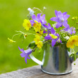 Wild summer flowers - Stock Photo
