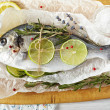 Sea bream — Stock Photo #23133548