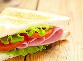 Big sandwich with fresh vegetables — Stock Photo