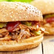 Stock Photo: Pulled pork sandwich