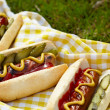 Stock Photo: Grilled hot dogs with mustard, ketchup and relish