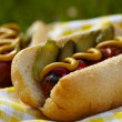 Grilled hot dogs with mustard, ketchup and relish — Stock Photo #25158957