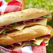 Long baguette sandwiches with salami and cheese — Stock Photo #25159165