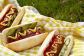 Grilled hot dogs with mustard, ketchup and relish — Stock Photo