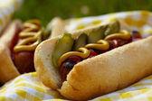 Grilované párky s hořčicí, kečupem a chutí — Stock fotografie